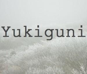 stinger子テーマ、yukiguniを使ってブログをリニューアル。ヘッダーを横幅いっぱいに。